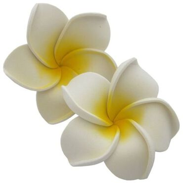 SBC Reusable Floating Petals White Pack of 10