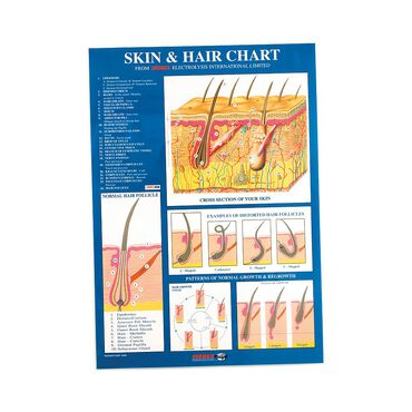 Sterex Electrolysis Skin and Hair Chart A2